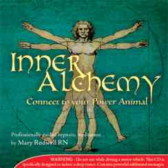 Inner Alchemy - Connect to Your Power Animal Meditation